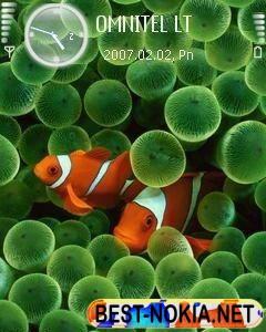 Clownfish - Symbian OS 9.1